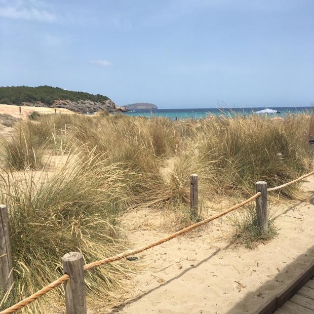 Cala Nova Ibiza Guida spiagge
